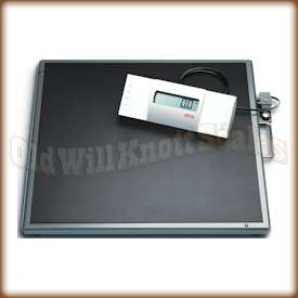 Seca 634 High Capacity Bariatic Floor Scale