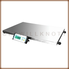The Adam Equipment CPWplus L industrial floor scale.
