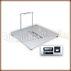Detecto FH-133-II/Ch In-Floor Scale - Handrail Model