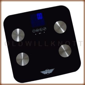 The My Weigh Galileo 2 digital body fat and water scale.