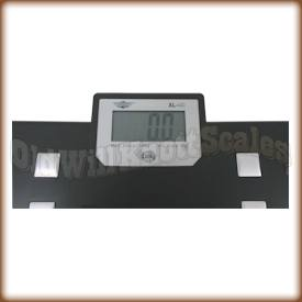 The MyWeigh XL-550's Display.