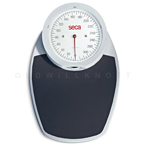 Beautifully Designed Mechanical Bathroom Scale From Seca 320 Pound Capacity X 1 Resolution