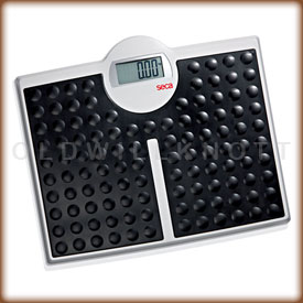 Seca 813 digital bathroom scale.