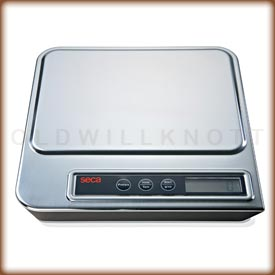 Seca 856 - Beautiful Stainless Steel Scale