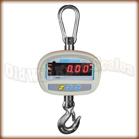 The Scale People Hanging Scale Inc 300 lb capacity