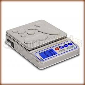 Detecto WPS12 Mariner wps12,mariner,waterproof,detecto,checkweighing,check weigher,checkweigher