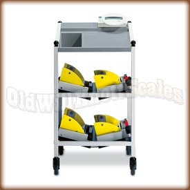 Seca 984 And Cart seca 984, seca scales, bed scale, dialysis scale, intensive care, medical scale, hospital scale